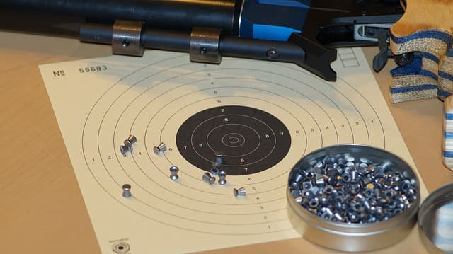 permiso de armas para tiro deportivo